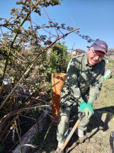 Man digging allotment